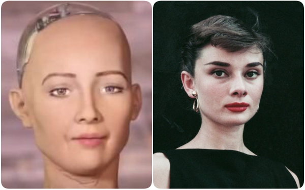Sophia vốn được lấy theo ngoại hình của Audrey Hepburn