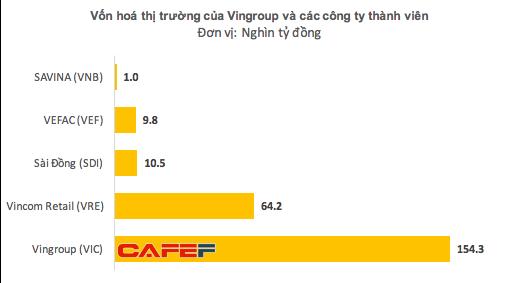 Vốn hoá chỉ 10.000 tỷ nhưng SDI đang nắm giữ lượng cổ phiếu Vincom Retail trị giá hơn 20.000 tỷ đồng  - Ảnh 2.