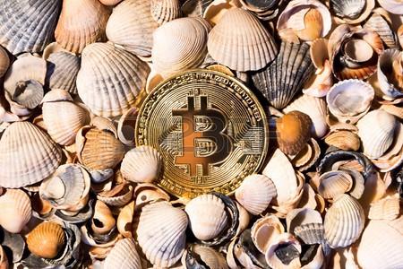 Những con cá voi xanh của thế giới Bitcoin, chỉ trở mình thôi là chao đảo cả thị trường - Ảnh 2.