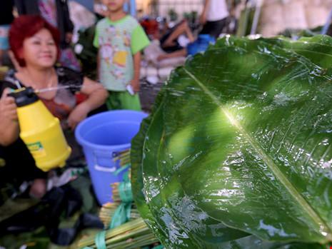 Người bán thường xuyên tưới nước để giữ lá được tươi xanh.