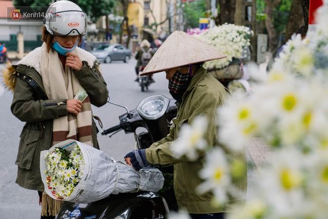 Đằng sau những gánh cúc họa mi trên phố Hà Nội là nỗi niềm của người nông dân Nhật Tân: Không còn sức nữa, phải bỏ hoa về nhà!  - Ảnh 13.