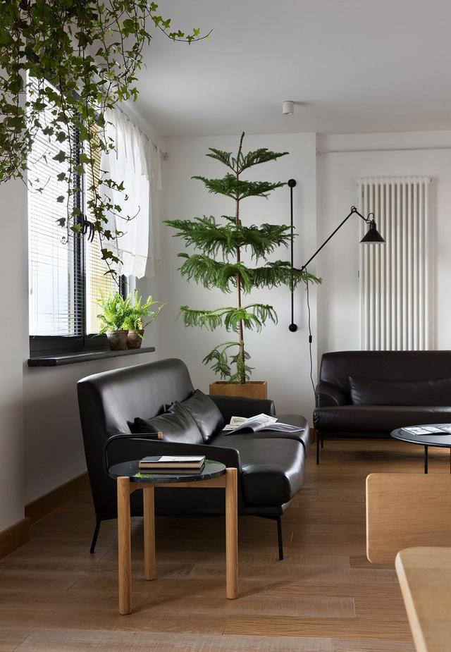 Căn hộ đẹp như mơ với cây xanh và nội thất gỗ - Ảnh 14.