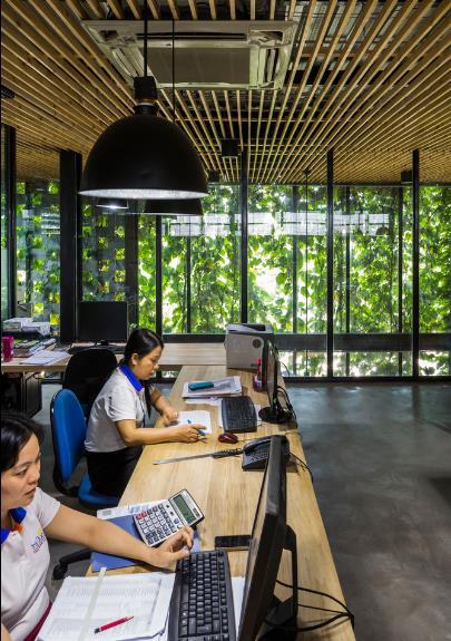 Một xưởng may tại KCN ở Sài Gòn được thiết kế phủ kín cây xanh mướt xuất hiện trên báo ngoại - Ảnh 14.