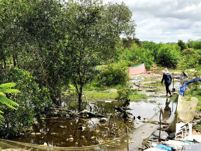 Nhiều dự án khu nghỉ dưỡng tại Phú Quốc lãnh đủ vì các núi rác  - Ảnh 16.