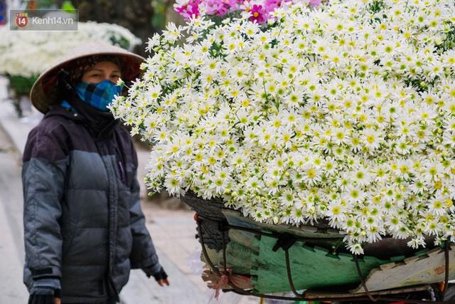 Đằng sau những gánh cúc họa mi trên phố Hà Nội là nỗi niềm của người nông dân Nhật Tân: Không còn sức nữa, phải bỏ hoa về nhà!  - Ảnh 16.