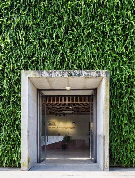 Một xưởng may tại KCN ở Sài Gòn được thiết kế phủ kín cây xanh mướt xuất hiện trên báo ngoại - Ảnh 3.