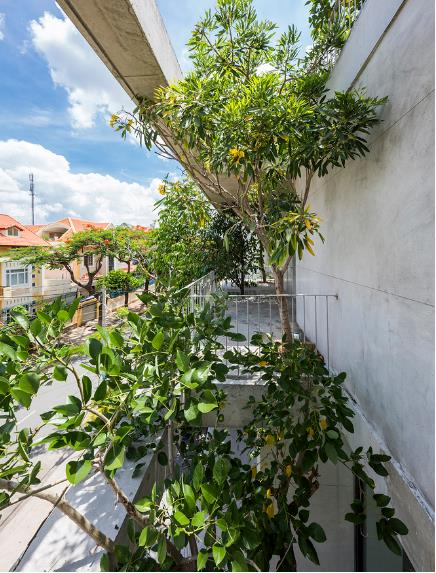 Báo Mỹ ngỡ ngàng với ngôi nhà tràn ngập cây xanh tuyệt đẹp giữa lòng Sài Gòn - ảnh 5