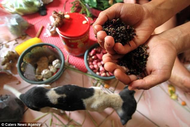 Hình ảnh rùng rợn trong những trang trại thịt chó: Nỗi đau của những chú chó phải chứng kiến cái chết của đồng loại - Ảnh 4.
