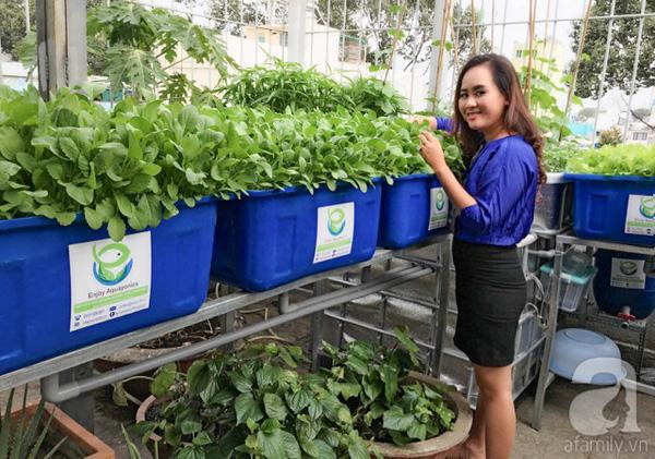 Giám đốc ngân hàng bỏ lương trăm triệu, trồng rau thu 2 tỷ/tháng - Ảnh 5.