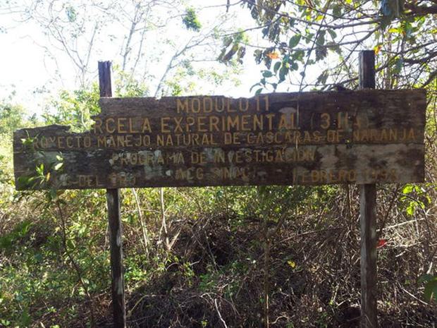 """Một công ty nước ép đổ 12.000 tấn vỏ cam xuống khu bảo tồn thiên nhiên, 19 năm sau, đây là """"hậu quả"""" - Ảnh 5."""