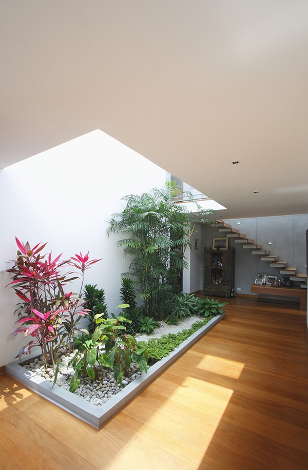 Một góc nhỏ tràn ngập cây xanh góp phần tạo nên phong cách độc đáo cho ngôi nhà.
