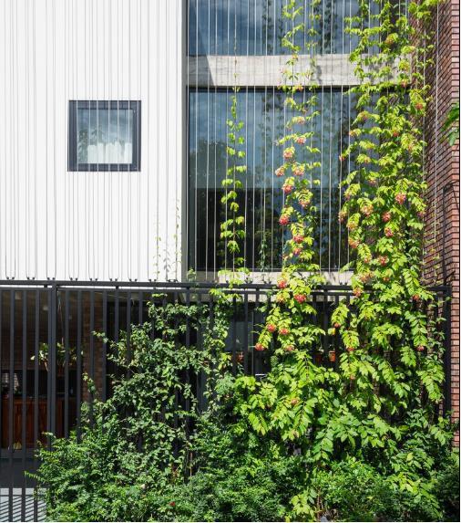 Ngôi nhà độc nhất vô nhị ở Vinh xuất hiện ấn tượng trên báo Mỹ - Ảnh 7.