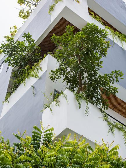Condotel như một ốc đảo xanh giữa lòng thành phố biển Đà Nẵng xuất hiện ấn tượng trên báo Mỹ  - Ảnh 9.
