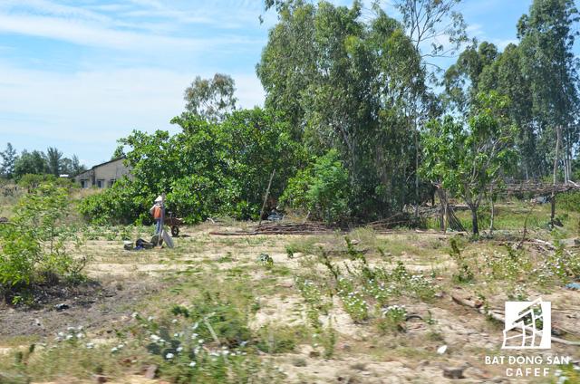 Đột nhập vùng đất khô cằn Nam Hội An - Nơi đang xây dựng dự án casino 4 tỷ USD và nhiều dự án BĐS lớn - Ảnh 10.