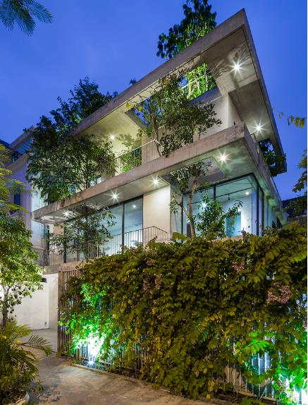 Báo Mỹ ngỡ ngàng với ngôi nhà tràn ngập cây xanh tuyệt đẹp giữa lòng Sài Gòn - ảnh 11