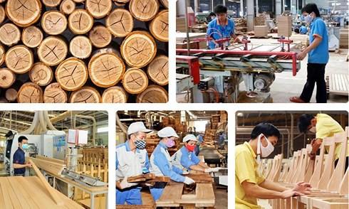 Chiến tranh thương mại Mỹ-Trung tác động mạnh đến ngành gỗ Việt Nam - Ảnh 1.