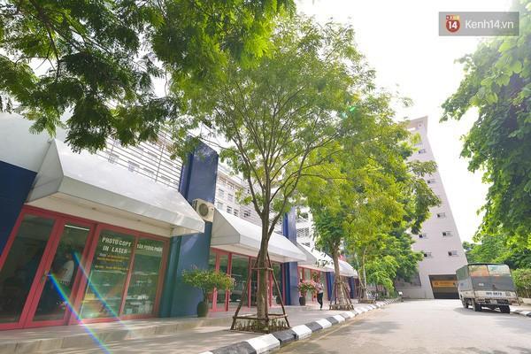 Bắc có ĐH Thăng Long, Nam có ĐH RMIT, đây chắc chắn là 2 ngôi trường đẹp, xịn nhất Việt Nam - Ảnh 12.