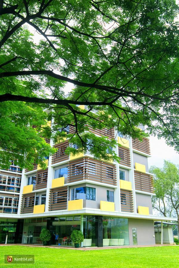 Bắc có ĐH Thăng Long, Nam có ĐH RMIT, đây chắc chắn là 2 ngôi trường đẹp, xịn nhất Việt Nam - Ảnh 18.