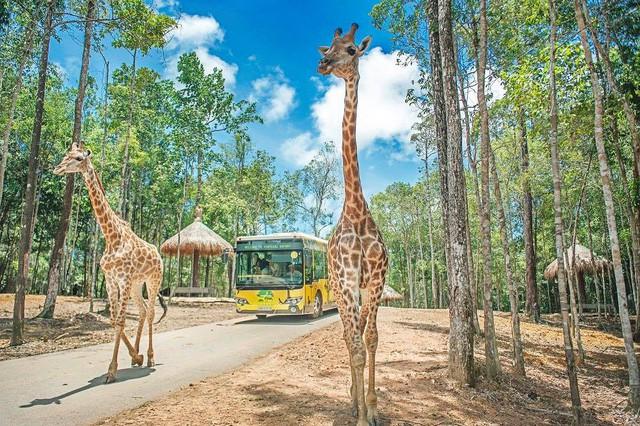 công viên vui chơi safari - photo 1 15400030299651060470604 - Hé lộ về dự án khu công viên vui chơi safari 1,5 tỷ USD của ông lớn BĐS Vingroup đối diện đại đô thị VinCity Ocean Park