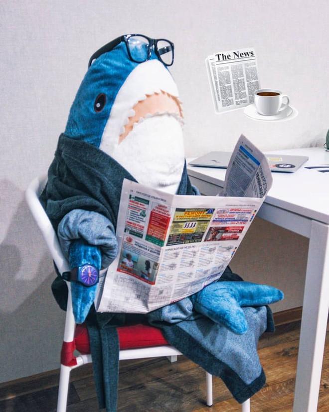 chú cá mập blaha - photo 4 1540899229107808333732 - Gặp gỡ Blaha – Chú cá mập nhồi bông đến từ IKEA đang làm náo loạn mạng xã hội thế giới