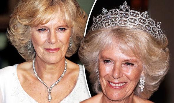 Người hâm mộ dậy sóng trước tin Nữ hoàng Anh ngầm chuyển giao quyền lực cho Charles, bà Camilla sẽ lên ngôi hoàng hậu - Ảnh 2.