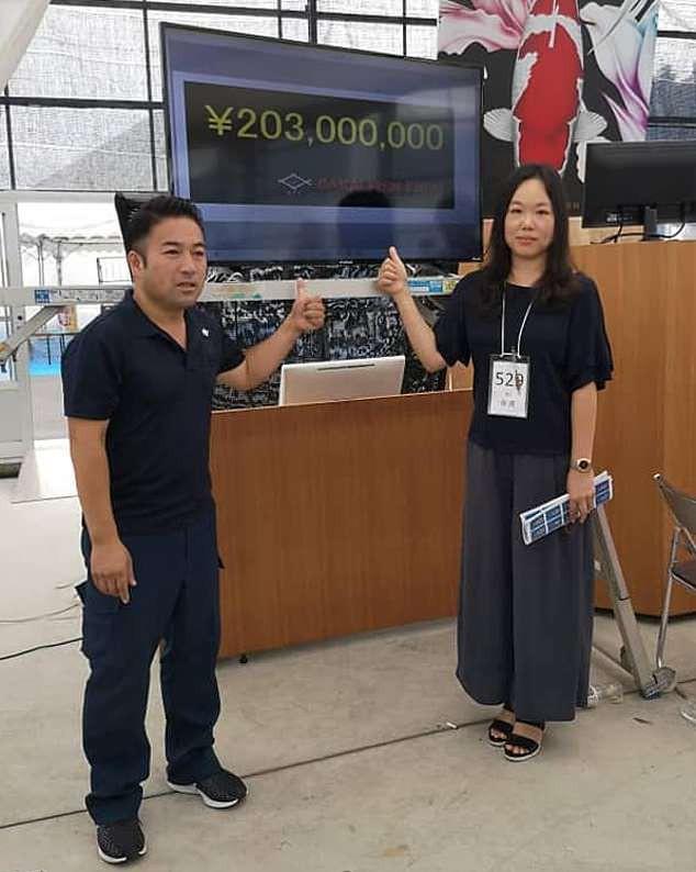 Đây là nữ hoàng cá Koi đắt nhất thế giới với giá gần 42 tỷ đồng - Ảnh 4.