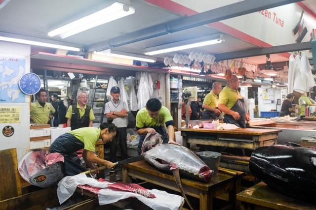 Chuyện về gia đình phía sau phiên đấu giá cá ngừ triệu USD nổi tiếng nhất nước Nhật - Ảnh 1.