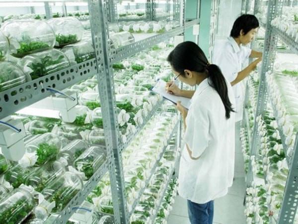 Ngay tại Hà Nội có một ngôi trường rộng gần 200ha, cây cối, hoa trái phủ xanh khắp nơi như rừng nhiệt đới - Ảnh 11.