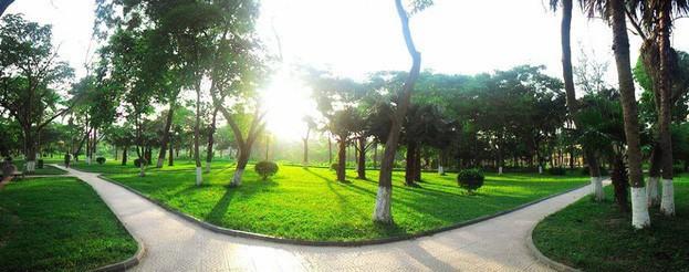 Ngay tại Hà Nội có một ngôi trường rộng gần 200ha, cây cối, hoa trái phủ xanh khắp nơi như rừng nhiệt đới - Ảnh 3.