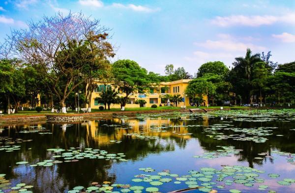 Ngay tại Hà Nội có một ngôi trường rộng gần 200ha, cây cối, hoa trái phủ xanh khắp nơi như rừng nhiệt đới - Ảnh 8.