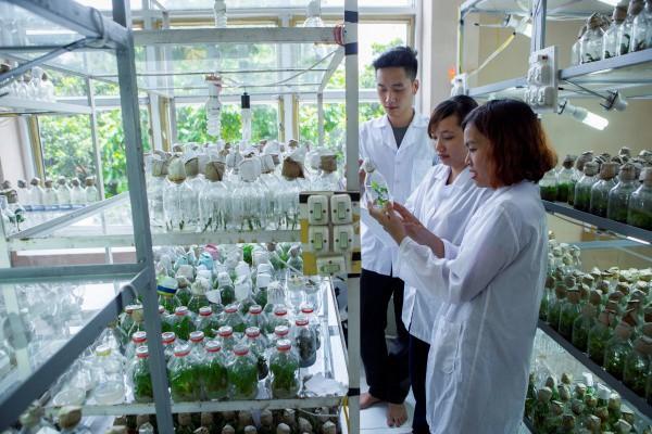 Ngay tại Hà Nội có một ngôi trường rộng gần 200ha, cây cối, hoa trái phủ xanh khắp nơi như rừng nhiệt đới - Ảnh 10.
