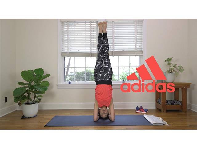 đầu tư giá trị - 3 15390741441361613949247 - Hành trình từ giáo viên yoga 'dạo' tới siêu sao Youtube với hơn 4 triệu người theo dõi