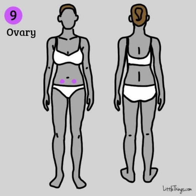 Những vị trí đau trên cơ thể cảnh báo nhiều bệnh nguy hiểm mà bạn không nên chủ quan xem thường - Ảnh 9.