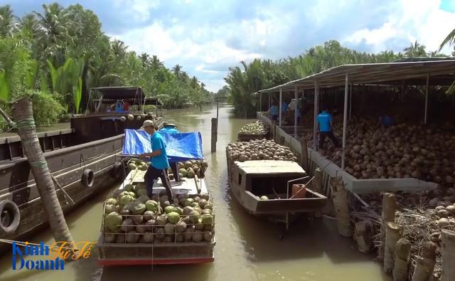 Hành trình ngược dòng Mê Kông ở thủ phủ dừa của Việt Nam - Ảnh 4.