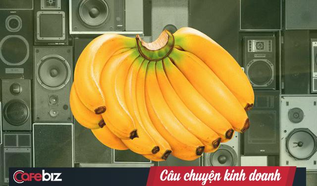 """Dùng tiếng lóng quảng cáo dàn loa giá """"299 bananas"""", khách hàng nghiêm túc mang 11.000 quả chuối thật đến đổi khiến chuỗi điện máy lỗ nặng - Ảnh 4."""
