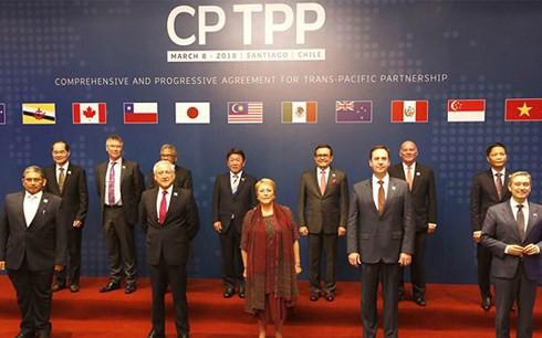 Hiệp định CPTPP - Cú huých để kinh tế tư nhân phát triển - Ảnh 2.