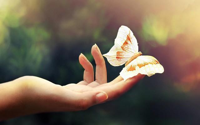 """Không muốn bị rơi vào hoàn cảnh """"càng hy vọng lắm, càng thất vọng nhiều"""" thì phải thuộc lòng 6 điều dưới đây: Nên nhớ đừng trông mong, phụ thuộc bất cứ điều gì vào người khác! - Ảnh 2."""