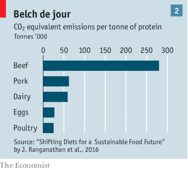Tại sao người dân ở các quốc gia giàu có đang ngày càng ăn nhiều thức ăn chay hơn? - Ảnh 4.