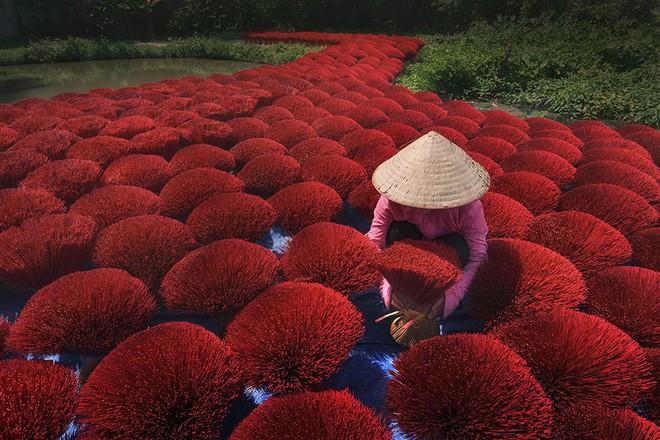 giải thưởng ảnh siena quốc tế - photo 3 15414761137172136189742 - 10+ khoảnh khắc tuyệt đẹp đoạt giải thưởng ảnh Siena quốc tế, 2 trong đó được chụp ở Việt Nam