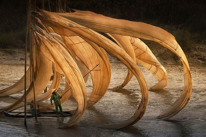 giải thưởng ảnh siena quốc tế - photo 7 15414761137221712100736 - 10+ khoảnh khắc tuyệt đẹp đoạt giải thưởng ảnh Siena quốc tế, 2 trong đó được chụp ở Việt Nam