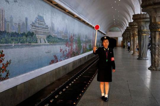 """Nấm ông Kim Jong-un tặng Hàn Quốc """"an toàn và ăn được"""" - Ảnh 2."""