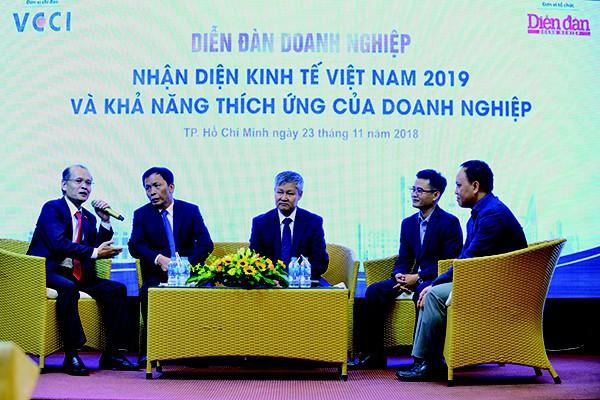 Lạc quan kinh tế Việt Nam 2019 - Ảnh 1.