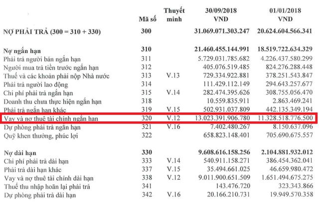 BSC tiên liệu Hòa Phát vay thêm 13.000 tỷ cho dự án Dung Quất, lãi ròng cán mốc 10.000 tỷ đồng trong năm 2019 - Ảnh 1.