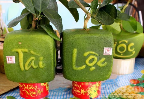 Trái cây độc bán Tết giá bạc triệu mỗi cặp - Ảnh 3.
