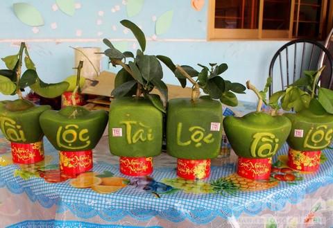 Trái cây độc bán Tết giá bạc triệu mỗi cặp - Ảnh 5.