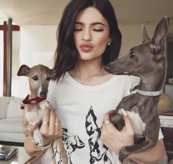 21 tuổi đã kiếm hàng ngàn tỷ đồng 1 năm, Kylie Jenner có cuộc sống sang chảnh và tài sản đáng ghen tị đến mức nào? - Ảnh 16.