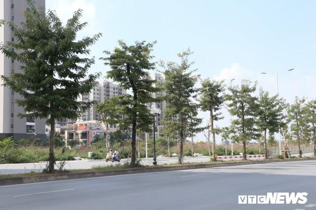 Ảnh: Cận cảnh phố 8 làn xe ở Hà Nội mang tên nhà tư sản Trịnh Văn Bô - Ảnh 5.