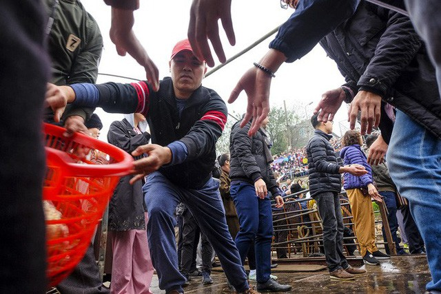 Hàng vạn người chuyền tay nhau phóng sinh gần 5 tấn cá xuống sông Hồng  - Ảnh 8.