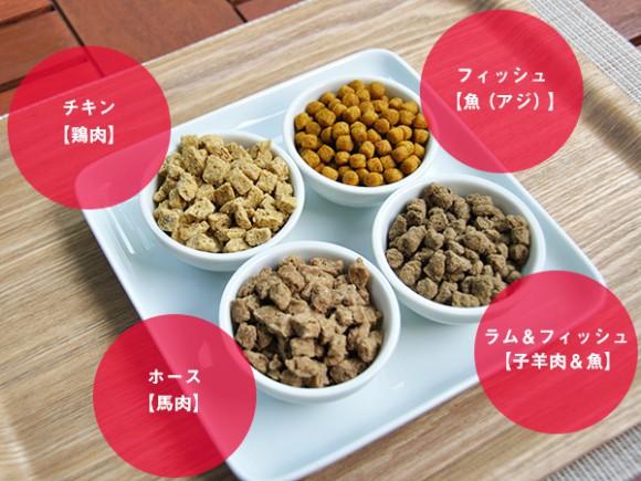 Nếm thức ăn cho chó, truy lùng mùi hôi và 5 công việc kỳ lạ chỉ có ở Nhật Bản - Ảnh 1.