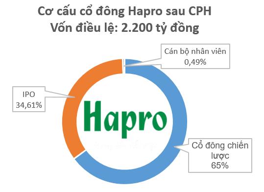 Sau Vinamotor, Honda Tây Hồ sẽ tiếp tục chi gần 2.000 tỷ để nắm quyền kiểm soát Hapro - Ảnh 1.